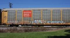 Byas/Eulogy/Pepe/Eye (quiet-silence) Tags: graffiti graff freight fr8 train railroad railcar art byas eulogy pepe eye fh autorack cp cprail ttgx988374