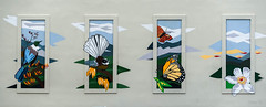 All NZ Wild Life and Flowers (Jocey K) Tags: newzealand christchurch building wall artowrk murals paintings art birds butterfly flowers