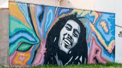 _DSC6042 (Mario C Bucci) Tags: saida fotografia pacheco paulo tellis mario bucci hugo shiraga fabio sideny roland grafites volu ii