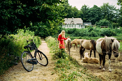 untitled (Esben Bg) Tags: 35mm film portra canon eos1v grain analog analogue scan canonscan 8800f eos 1v kodak copenhagen kbenhavn garden sun warm girl outdoor horses horse bike