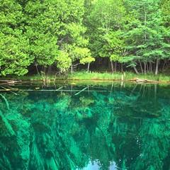 Kitch-iti-Kipi (Go See Do Photos) Tags: kitchitikipi bigspring palmsbookstatepark manistique upperpeninsula michigan