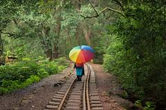 Matheran-4850 (Satish Chelluri) Tags: satishchelluri satishchelluriphotography matheran maharastra umbrella mansoon