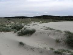 De Kerf (NH) (Bas Kers (NL)) Tags: netherlands europe july 2012 noordholland dekerf noordhollandsduinreservaat