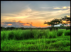 HDR Scenery