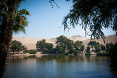 oasis (M00k) Tags: peru oasis huacachina