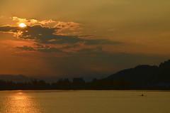 Zrisee Rudrr (contessa.) Tags: sunset reflection water clouds schweiz switzerland wasser zurich wolken zrich sonnenaufgang spiegelung rower zrichsee oarsman lakezurich ruderer