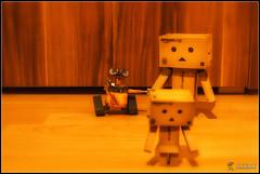 New Friend (Only in RAW ) Tags: film japan happy robot amazon box explorer mini days cardboard pixar danny 365 danni yoys walle danbo amazoncojp revoltech danboard minidanbo