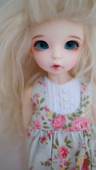 Lillibet (MilkyWaySugar - moved to a new account) Tags: bjd fairyland ante yosd littlefee