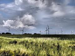 Windrder auf Fehmarn (einervonneruhr) Tags: art pen power wind dramatic olympus filter f18 ostsee tone 45mm fehmarn schleswigholstein effekt ep3 windkraft dramatischer bojendorf mzuiko