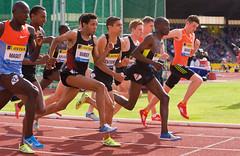 _DSC4615w (Adrian Royle) Tags: sport athletics birmingham nikon uka aviva 2012 1500m alexanderstadium ukathletics samsungdiamondleague jamesmagut abdelaatiiguider birminghamgrandprix niallbrooks