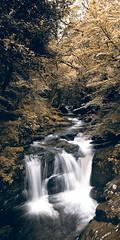 Killarney National Park (Con Ryan) Tags: waterfall killarneynationalpark vertorama