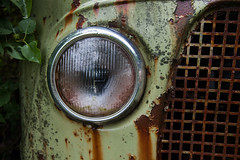 ... (Zen Roxy) Tags: texture abandoned lamp leaves car rust decay rusty headlight grille oldcar corrode bstns