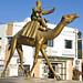 Tunisia-3653 - Welcome to Douz