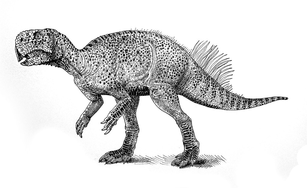 """dinosaur psittacosaurus research paper Everything dinosaur team members have been lucky enough to have viewed up close the remarkable fossil specimen that formed the basis of the research into the colouration of psittacosaurus the study was published in 2016 in the academic journal """"current biology""""."""