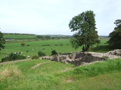 """Sherborne Old Castle • <a style=""""font-size:0.8em;"""" href=""""http://www.flickr.com/photos/81195048@N05/8017435613/"""" target=""""_blank"""">View on Flickr</a>"""