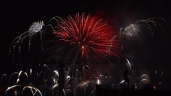 Lighting Up The Night Sky ...with Peonies, Willows & Half Chrysanthemums (jANgsg) Tags: singapore night nightsky fireworks display ndp2016 preview 2