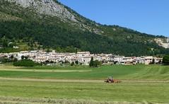 les foins à Caille (b.four) Tags: village paese foin hay fieno caille alpesmaritimes ruby3