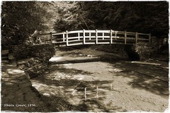 Ithaca Creek, 1896 (Don Iannone) Tags: ithacany reenactmentphotography sepiatone 8x10cameraeffect