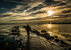 B*gger the Tide!!!   [Explored] (RonnieLMills - 2 Million Views...Thank you All :)) Tags: high tide islandhill early morning walker rough island reflections water strangford lough comber newtownards county down northern ireland explore explored 75