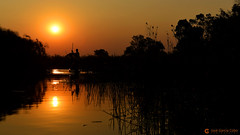 15-09-18 Ruta Okavango Botswana (472) R02 (Nikobo3) Tags: frica botswana delta deltadelokavango okavango parque naturaleza paisajes travel viajes nikon nikond800 d800 nikon247028 nikobo josgarcacobo flickrtravelaward ngc unesco omot twop color culturas puestadesol