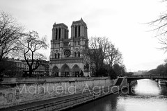 #catedral #cathedral #cathdrale #notredame #rosena #river #sena #2014 #pars #paris #francia #france #ciudad #city #viajar #travel #viaje #trip #reflejos #reflexes #highlights #paisaje #landscape #blancoynegro #blackandwhite #photography #photographer # (Manuela Aguadero) Tags: paisaje travel landscape reflejos viaje photography sena catedral city blackandwhite paris sonya350 notredame sonyalpha photographer france trip sonyalpha350 ciudad blancoynegro 2014 viajar highlights reflexes francia cathdrale rosena cathedral alpha350 pars river