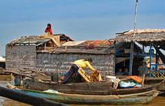 Life on Tonle Sap (Ellsasha) Tags: cambodia vietnamese boatpeople tonlesap fishing fishingvillages floatingvillages southeastasia