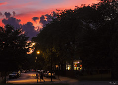 Summer Twilight, Dickens and Burling Streets (rjseg1) Tags: ozpark lincolnpark chicago sunset dickens burling