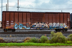 (o texano) Tags: houston texas graffiti trains freights bench benching lm elem cuate rtd by uk wh zee db