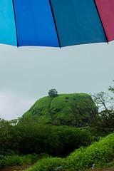 Matheran-5266 (Satish Chelluri) Tags: satishchelluri satishchelluriphotography matheran maharastra umbrella mansoon