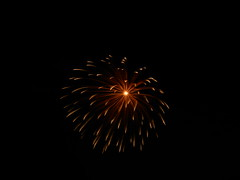 DSCN3013 (Yoru Tsukino) Tags: fireworks canada day 2016 night fire colorful colourful annual yearly