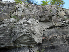 Mannington Sandstone (Upper Pennsylvanian; Narrows Run South roadcut, Belmont County, Ohio, USA) 25 (James St. John) Tags: mannington sandstone washington formation dunkard group pennsylvanian narrows run south outcrop roadcut powhatan point ohio channel fluvial