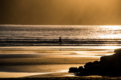 Golden hour at the beach (Merrillie) Tags: daybreak uminabeach landscape nature australia nswcentralcoast newsouthwales sea nsw beach ocean centralcoastnsw umina photography waves outdoors seascape waterscape centralcoast water sunrise sunlight light silhouettes golden