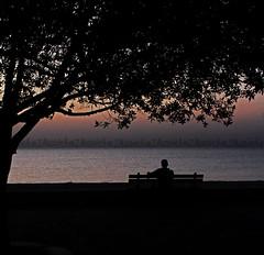 sun rise ♡ (Zaina Al-Sanea) Tags: sea sun beach sunrise photography chair rise zaina alsanea zalsanea