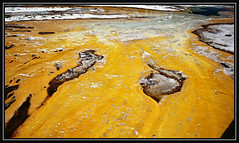 Yellowstone Abstract (Jared Wilson) Tags: park abstract color canon landscape mark scenic basin upper national ii 5d yellowstone mm wyoming geyser bacteria runoff 24105 thermofiles