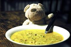 16.08.12: Zucchini-Zubereitung Nr. 2 (Wang Wang 22) Tags: dog cute nikon pug plush hund 365 nici pictureoftheday mainz mops d90 fotodestages wangwang wangwang22
