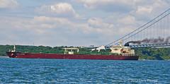 UACC FALCO (Chris S Thorpe) Tags: ocean newyork clouds ship smoke falcon shipping tanker verrazanonarrows newyorkharbor uacc uaccfalcon