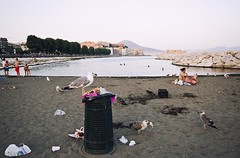 untitled (michele liberti) Tags: street seagulls beach colors birds napoli naples streetcolors streetnaples summer2012