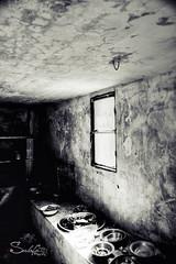 Abandoned (Sulafa) Tags: house abandoned deserted