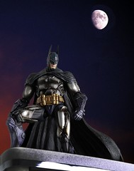 Gotham City's Protector (PowerPee) Tags: actionfigures batman collectibles playarts