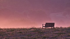 Morning light (Per Jensen) Tags: morning pink sunrise bench dream atmosphere august valley hallucination dreamy morgen 2012 bnk solopgang dal fatamogama