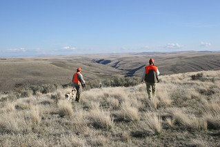 Oregon Luxury Upland Hunting 12