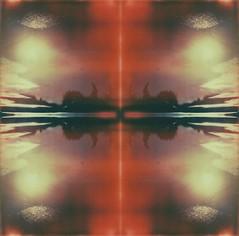(mari-ann curtis) Tags: light orange colour reflection water sunshine square polaroid puddle sx70 experiment lightleak polaroids impossibleproject marianncurtis