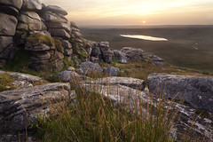Earth,s History (Ray Bradshaw.) Tags: uk pink sunset wild england outcrop sunlight mountain colour green nature beauty grass rock horizontal landscape carpet outdoors photography leaf bush flora day purple heather hill peak granite rippled moor barren plain scenics bodminmoor undulating spreading rockformation mountainrange covering wildernes ruralscene landfeature nonurbanscene extremeterrain southwestengland cornwallengland tiekie