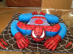 "Spidy 3-D • <a style=""font-size:0.8em;"" href=""http://www.flickr.com/photos/60584691@N02/7977112058/"" target=""_blank"">View on Flickr</a>"