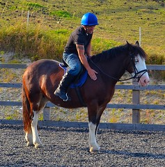 Me and Dolly (TrevKerr) Tags: blue horse nikon riding cob d7000