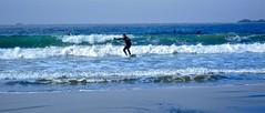 surf6 (vikapproved) Tags: vancouver island model break bc magic columbia surfing shore longboard tofino british walden gsi