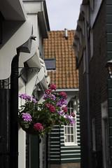Marken2016-7053 (Jeannot56) Tags: nl nederland noordholland marken