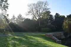 Hanbury Hall, Droitwich (bigjohn23582) Tags: hanbury hanburyhall hall house history manorhouse statelyhome sun nationaltrust november england autumn