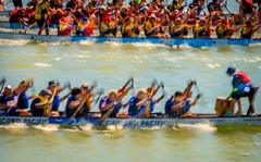 Dragon Boat competition  (T.ye) Tags: dragon boat festival action movement competition sport water river cultural bc canada boating fraser outside ourdoor people
