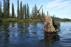LaVern Beier, brown bear biologist (Jared Hughey) Tags: wild animal wildlife nature landscape scenery wilderness mammal bird nationalparkservice research science gatesofthearcticnationalparkandpreserve brooksrange arcticcircle northern alaska